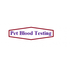 Pet Blood Testing